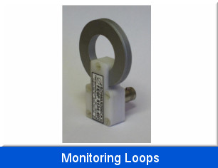 Monitoring Loops